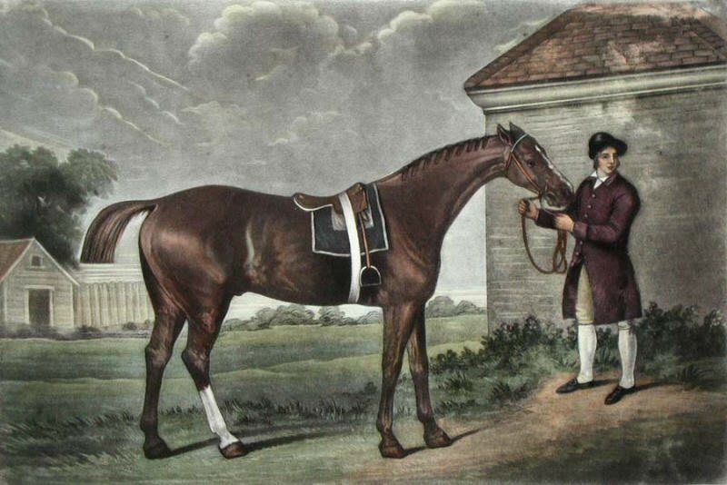 history of horseriding